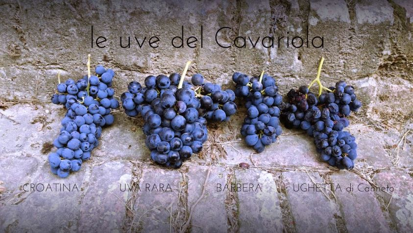 Serata Degustazione: Il Cavariola di Bruno Verdi in verticale: 2003, 2010, 2012 e 2013